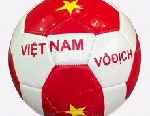 Điểm danh những cầu thủ Việt kiều sáng giá nhất hiện nay